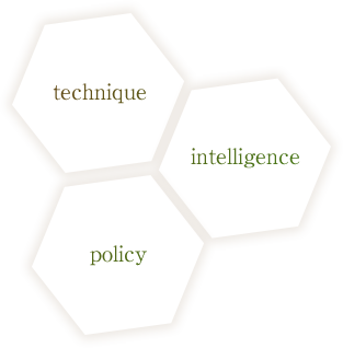 technique intelligence policy